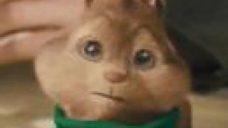 Cute Theodore Youtube