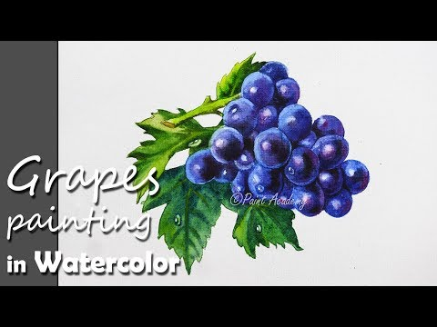How to Paint Grapes in Watercolor with Leaves | step by step video