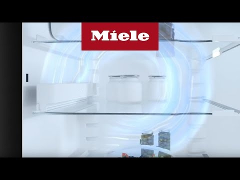Miele Activ AirClean-filter