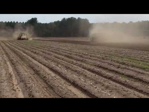 First Day of Planting Potatoes at Alsum Farms