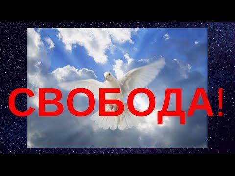 В Украине говорят, что лучше умереть стоя, чем жить на коленях! photo