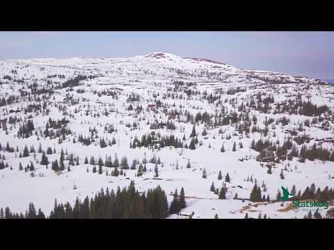 Frolfjellstuggu - fin seterinspirert utleiehytte i Heståsdalen i Levanger