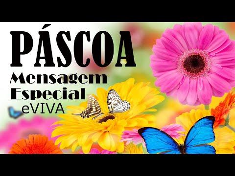 MENSAGEM ESPECIAL DE PÁSCOA EVIVA HAPPY EASTER  СЧАСТЛИВЫЙ ВОСТОК عيد سعيد खुशमिजाज आदमी PASQUA DIA
