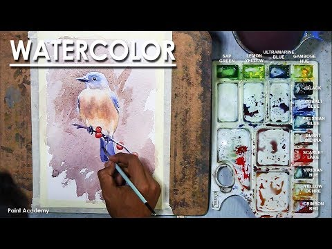 Watercolor Painting : Blue Bird on Red Berries