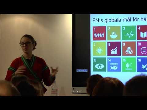 Workshop Hållbar Utveckling och SMART amp 2017