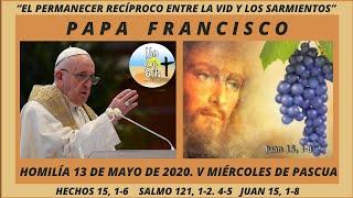 PAPA FRANCISCO. HOMILÍA 13 DE MAYO DE 2020. COMENTARIO A JUAN 15, 1-8. MIÉRCOLES V SEMANA DE PASCUA.