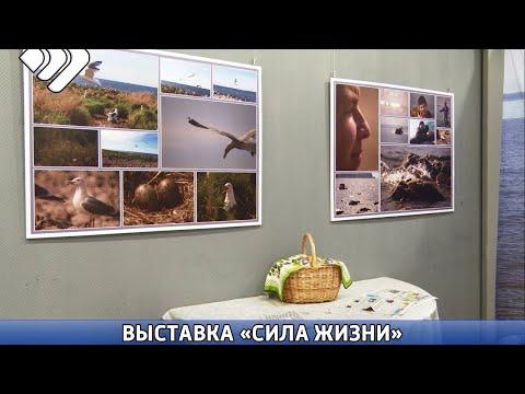 В столичном Доме Дружбы народов открылась фотовыставка Ивана Жукова