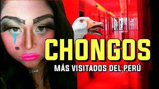 Los 5 CHONGOS ?? más visitados del Perú (2020)