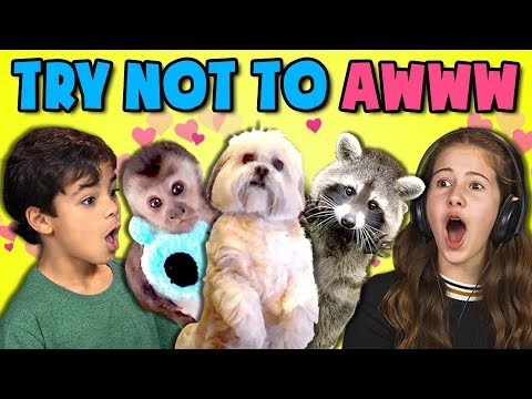 connectYoutube - KIDS REACT TO TRY NOT TO AWW CHALLENGE