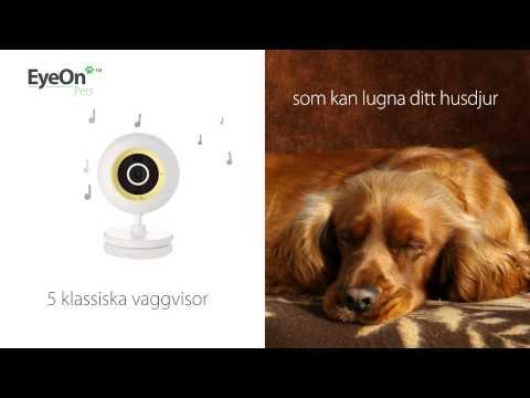 EyeOn Pet Monitor - Se vad ditt husdjur gör när du inte är hemma