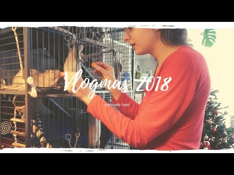 A Very Rattie Christmas | Vlogmas 2018 #2