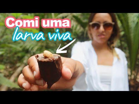 MINHA VIAGEM PARA AMAZÔNIA: 4 DIAS OFFLINE NA SELVA | Prefiro Viajar
