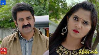 Manasu Mamata Serial Promo - 14th November 2020 - Manasu Mamata Telugu Serial - Mallemalatv - MALLEMALATV