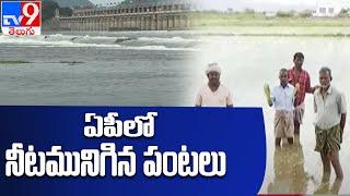 పశ్చిమ గోదావరి జిల్లాలో వదరల ఉధృతి   West Godavari  - TV9 - TV9