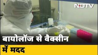 Coronaviurs Vaccine : जेनोम सिक्वेंसिंग में जुटे वैज्ञानिक - NDTVINDIA