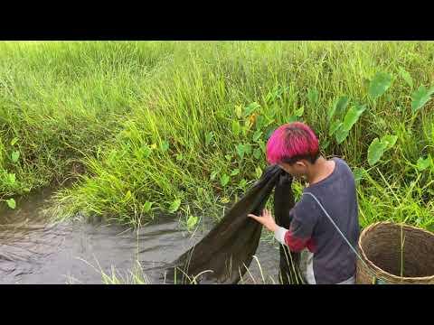 จอนนี่พาพ่อแม่พี่น้องมายามปลาใ