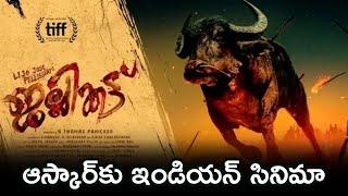 ఆస్కార్కు ఇండియన్ సినిమా | jallikattu movie | Tollywood News | TFPC - TFPC
