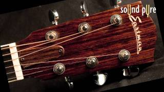 Eastman AC412 Acoustic Guitar Review and Demo Video