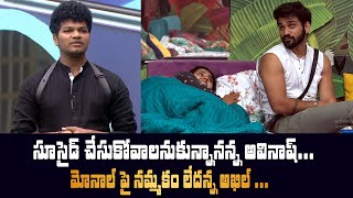 Big Boss 4 Day - 33 Highlights | BB4 Episode 34 | BB4 Telugu | Nagarjuna | IndiaGlitz Telugu - IGTELUGU