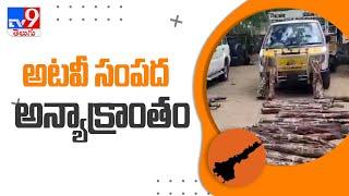 Chittoor : రూ.20 లక్షల విలువైన ఎర్రచందనం దుంగలు స్వాధీనం - TV9 - TV9