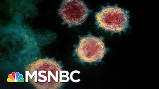 Silence From CDC And White House Coronavirus Task Force Is Deafening | The 11th Hour | MSNBC