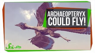The First Known Bird Could Fly, But Super Awkwardly