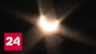 Первое затмение года: ради него астрономы-любители в Приморье са