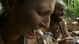 Snake Meat Dinner