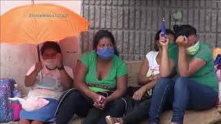 #COVID19 y Dengue, mezcla riesgosa para agravar atención hospitalaria en América Latina