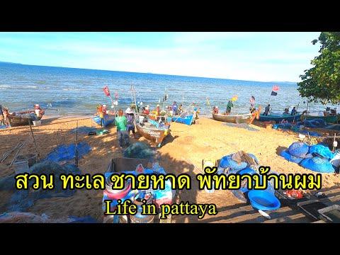 สวน-ทะเล-ชายหาด-ที่พัทยา-ใช้ชี