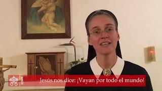 Comentario del Evangelio del día (24 de mayo de 2020)