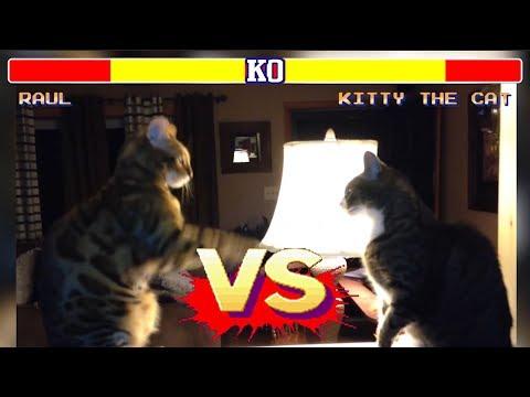 connectYoutube - Street Fighter Videos Engraçados Edition - Canal Final Boss Memes
