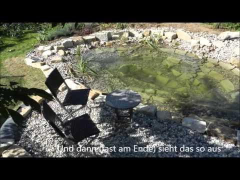 Youtube to mp3 der gartenteich nach einem jahr www for Elritzen im gartenteich