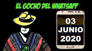 El Gocho del Whatsapp 03 - 06 - 2020