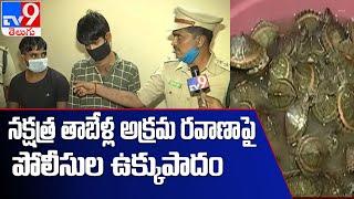 Police arrest smugglers for trafficking baby Star Tortoises - TV9 - TV9