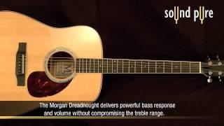 Morgan DM Acoustic Guitar Demo at Sound Pure
