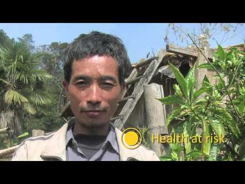 Mediathekbild - mit dem Titel SURUMER - Sustainable rubber cultivation in the Mekong...
