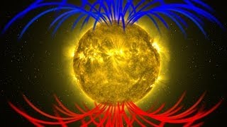 NASA | Alex Young Interview About Our Sun's Magnetic Flip