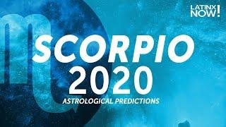 SCORPIO 2020 Horoscope Predictions | Latinx Now! | Telemundo English