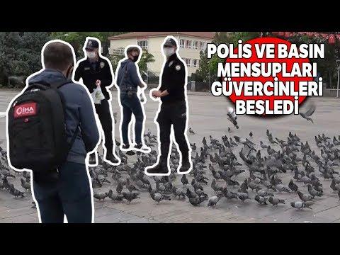 Meydanlar Onlara Kalmıştı, Polis Ve Basın Mensupları Yem Attı