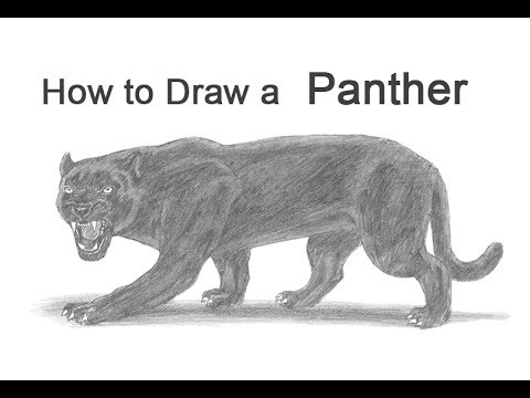download youtube to mp3 how to draw a black panther