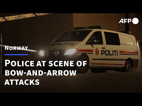 Images of police at the scene following Norway bow-and-arrows attack | AFP