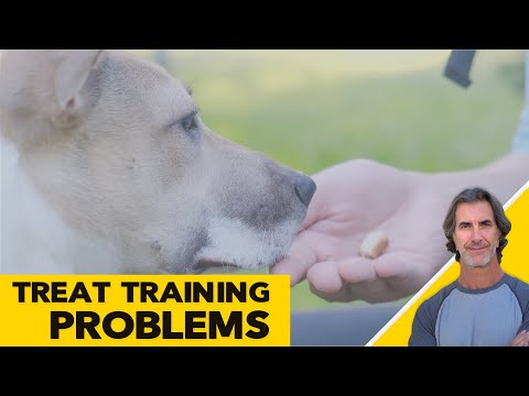 Treat Training Dogs - Positive Only Training Issues - Robert Cabral ask me anything
