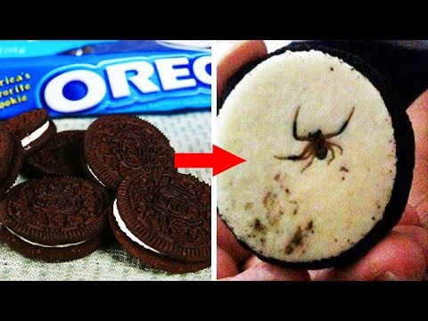 10 Shocking Things Found In Your Favourite Foods