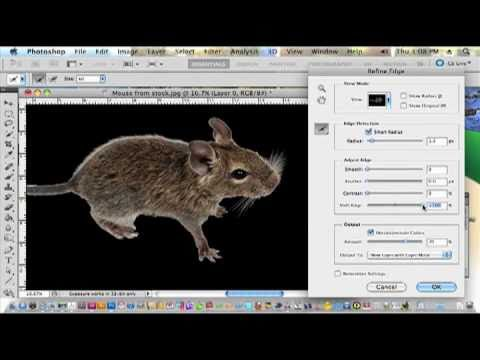 UP tips | Removing image background in Photoshop