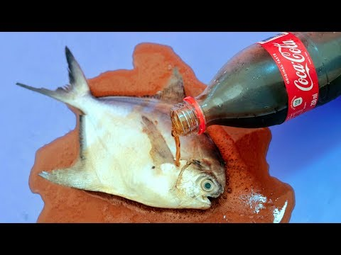 6 Awesome Kitchen Life Hacks