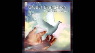 Daca eu voi sta - Grupul Evangelion