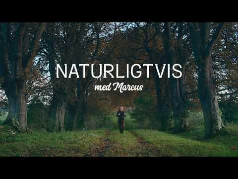 NATURLIGTVIS MED MARCUS – EN FILM OM NYA ARTER I VÅR SVENSKA FAUNA