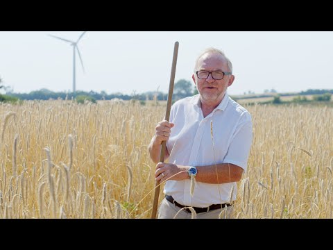 Fuldkornspartnerskabets klimavideo