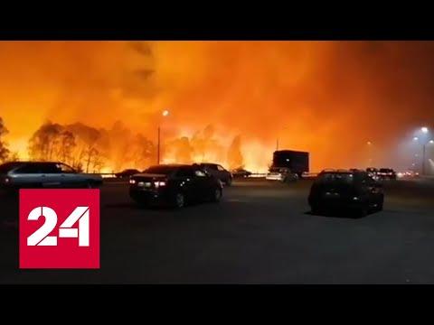Поджоги или нет: Следственный комитет проводит проверки из-за пожаров в Воронежской области